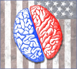 Blue and Red Brain